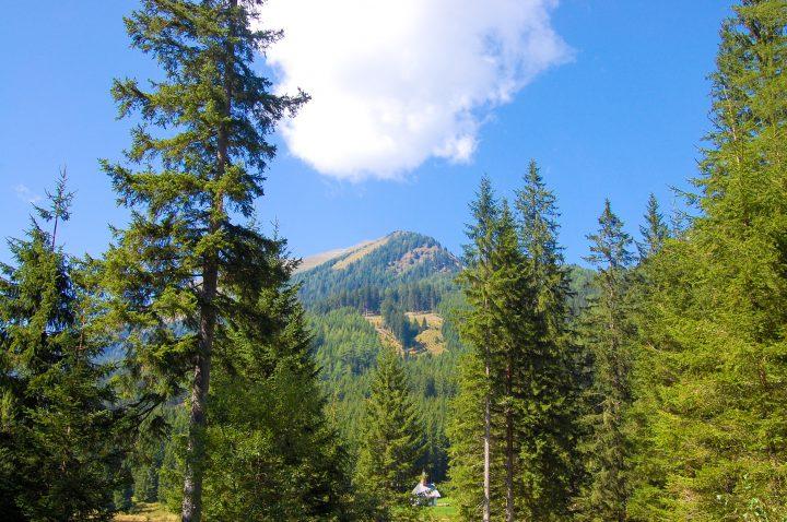 Infos Ingeringsee, Autriche ⎜ Austria