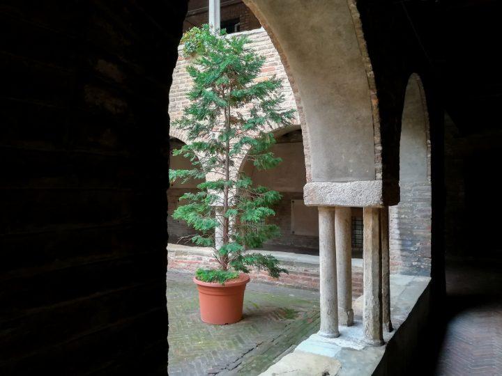 Bologna, rues & églises ⎜ Bologna, streets & churches (2)